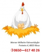 Werner Wilhelm Fahrverkäufer